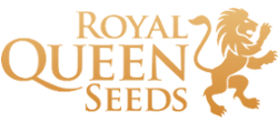 ROYAL QUEEN SEEDS CBD OLJE partner